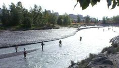 Ship Creek 2