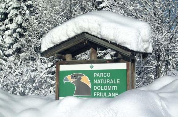 Parco Nazionale delle Dolomiti Friulane